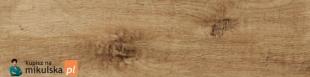 Limone  Forest Beige Płytka podłogowa G1420