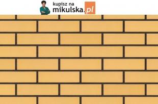 RÓŻA PUSTYNI płytka elewacyjna King Klinkier / PRZYSUCHA