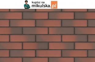 TAJEMNICZY OGRÓD płytka elewacyjna King Klinkier / PRZYSUCHA