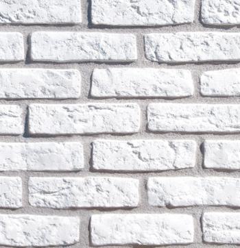 kamień elewacyjny biały